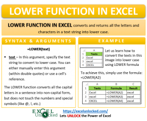 Infographic - LOWER Formula Function in Excel