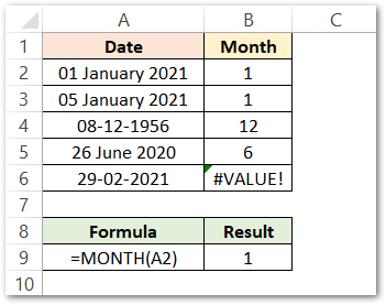 MONTH Function in Excel Example 1 result